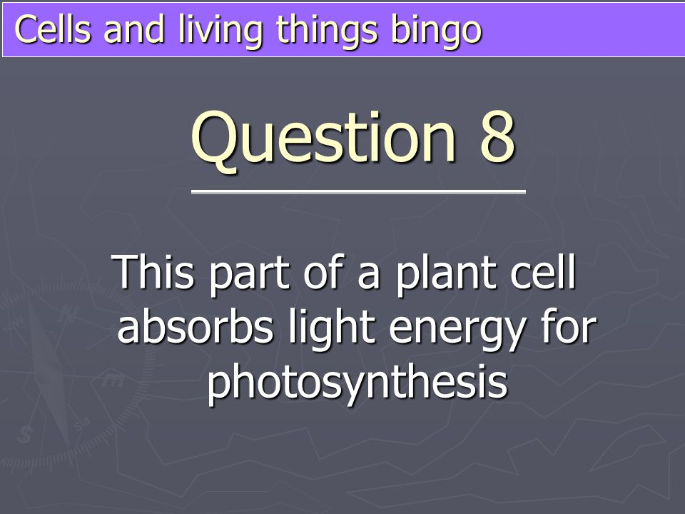 Cells and living things bingo This part of a plant cell absorbs light energy for photosynthesis Question 8