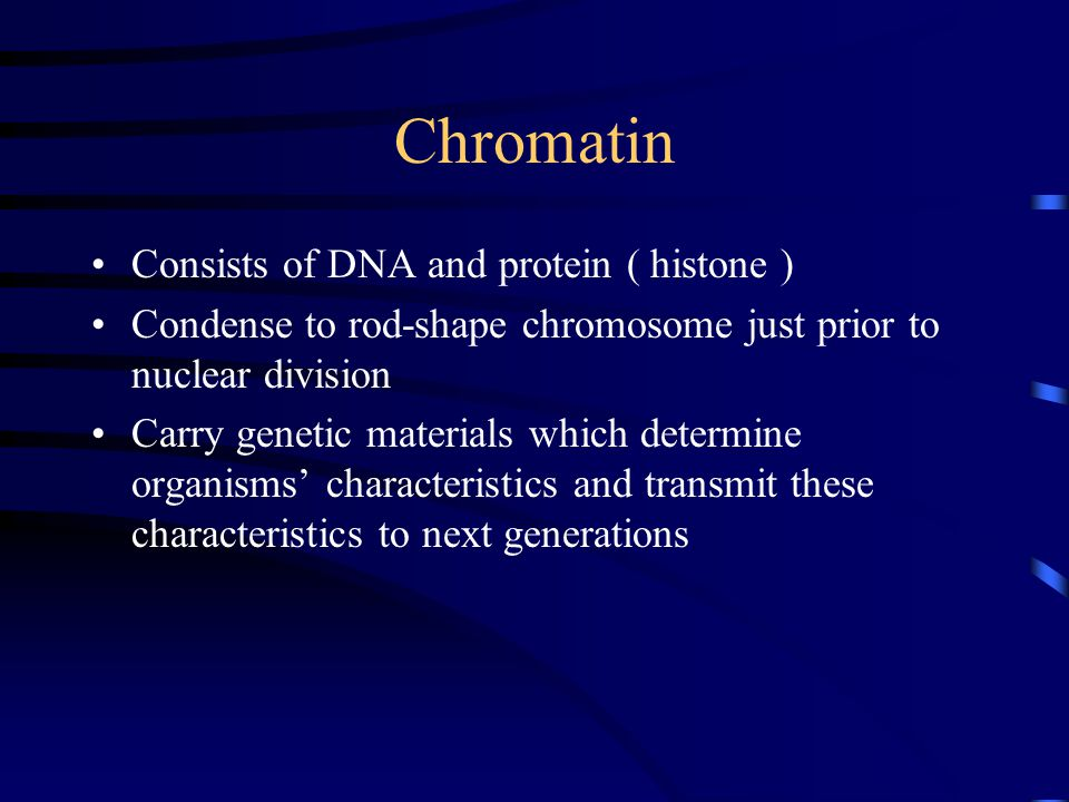 Chromatin Consists of DNA and protein ( histone ) Condense to rod-shape chromosome just prior to nuclear division Carry genetic materials which determine organisms' characteristics and transmit these characteristics to next generations