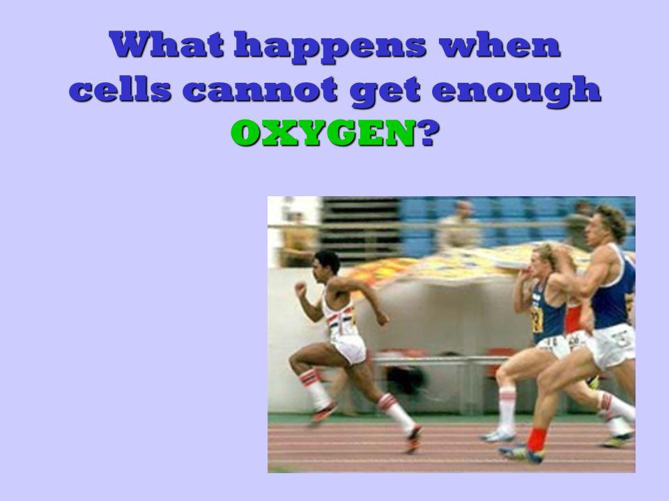 What happens when cells cannot get enough OXYGEN