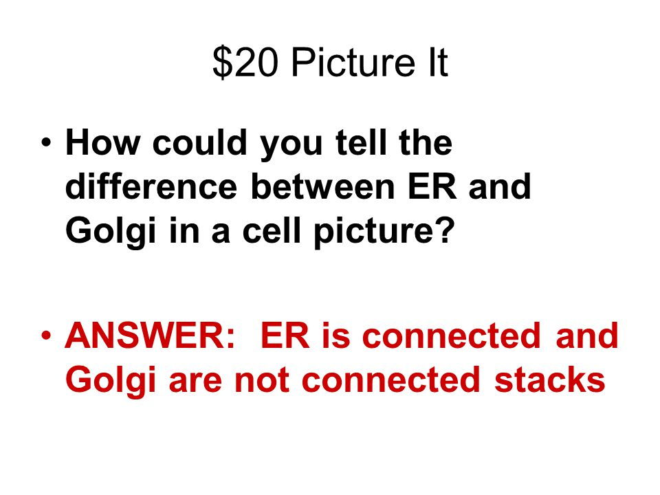 $20 Picture It How could you tell the difference between ER and Golgi in a cell picture? ANSWER: ER is connected and Golgi are not connected stacks