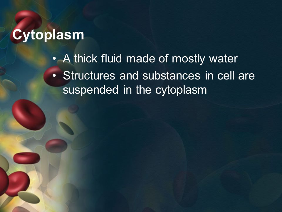 Cytoplasm A thick fluid made of mostly water Structures and substances in cell are suspended in the cytoplasm