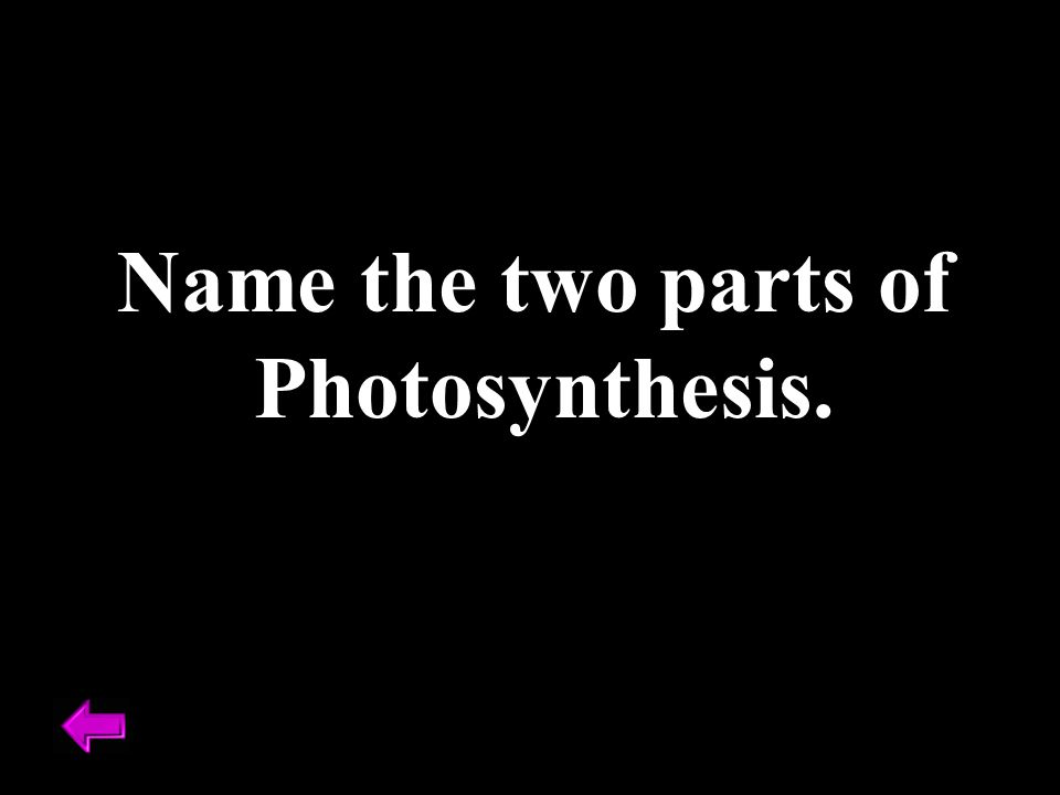 Name the two parts of Photosynthesis.