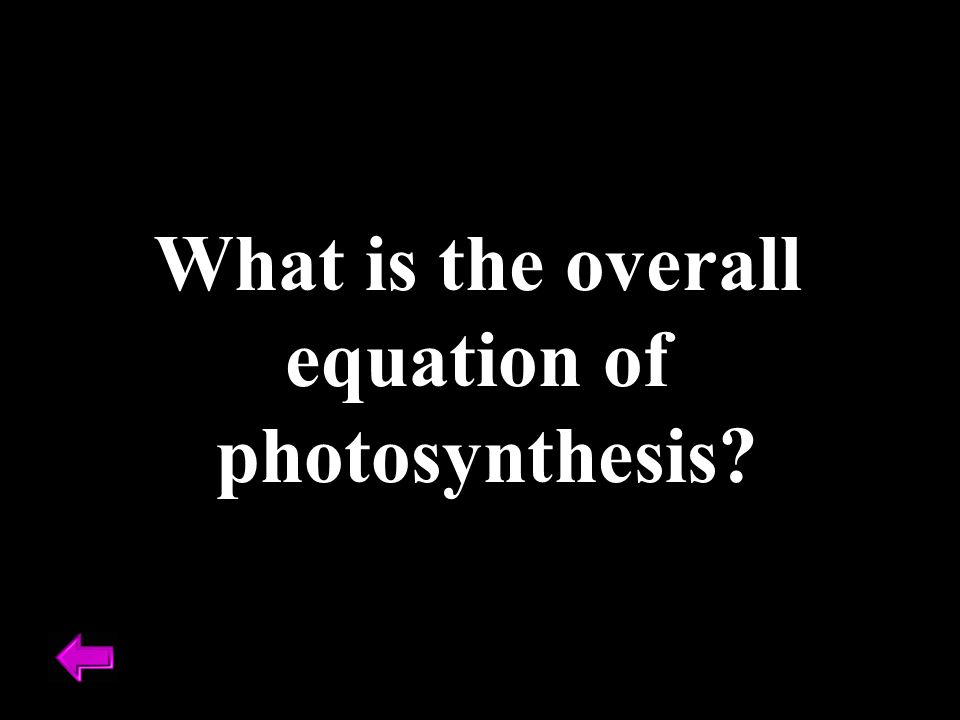 What is the overall equation of photosynthesis?