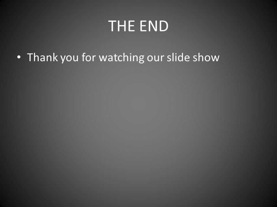 THE END Thank you for watching our slide show
