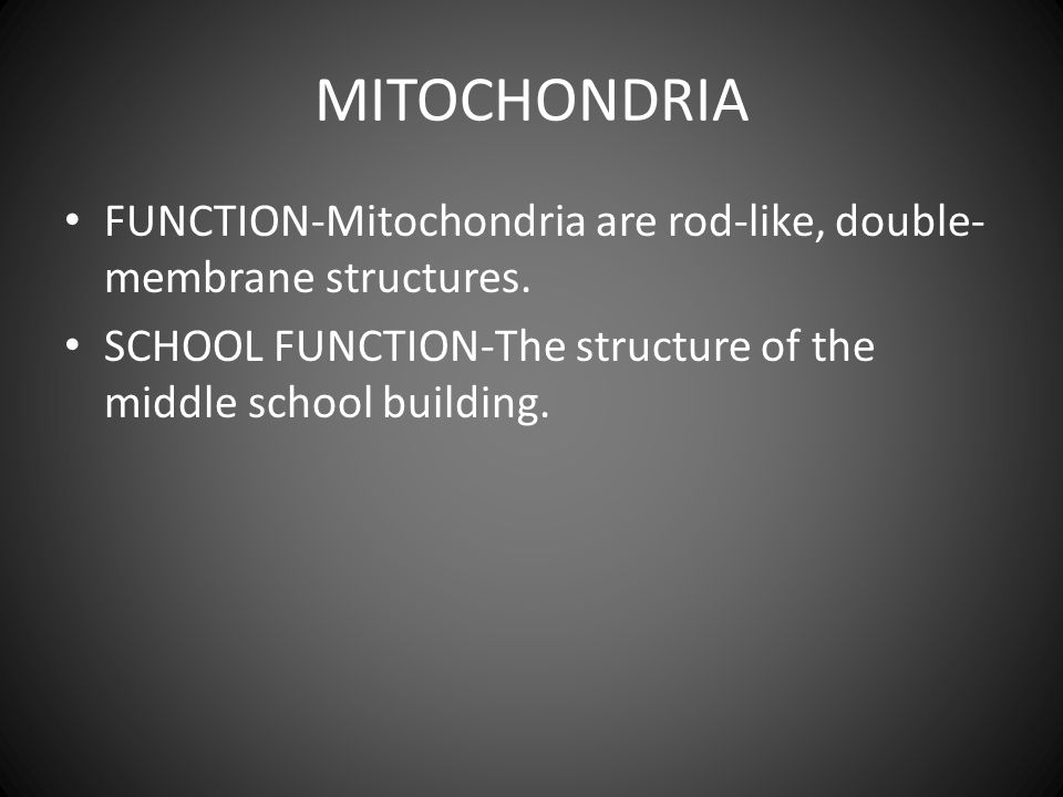 MITOCHONDRIA FUNCTION-Mitochondria are rod-like, double- membrane structures.