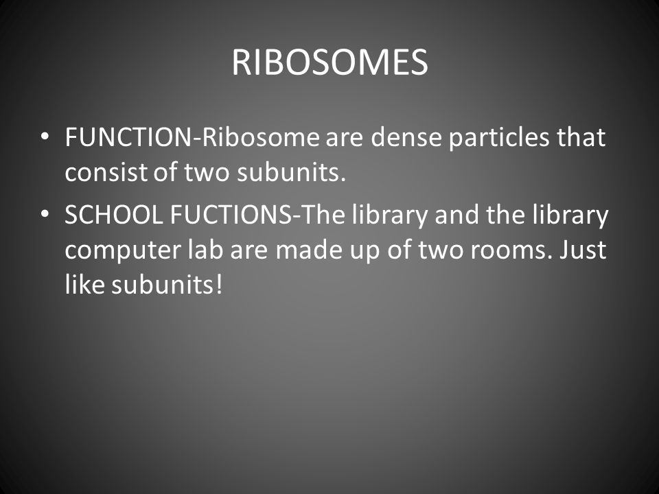 RIBOSOMES FUNCTION-Ribosome are dense particles that consist of two subunits.