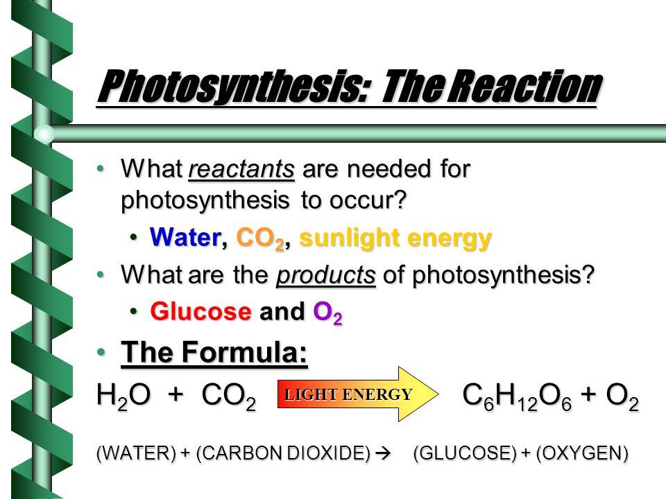 Photosynthesis: Chlorophyll Sun emits energy in different wavelengthsSun emits energy in different wavelengths The shorter the wavelength, the more en