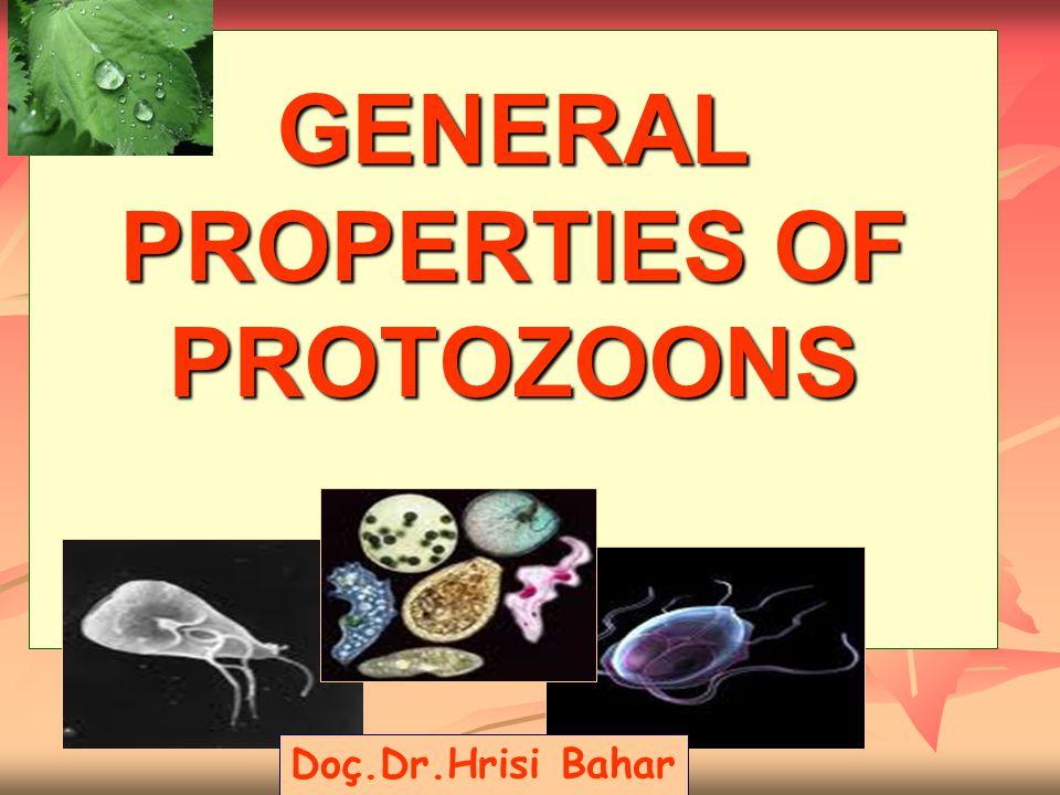 GENERAL PROPERTIES OF PROTOZOONS Doç.Dr.Hrisi Bahar