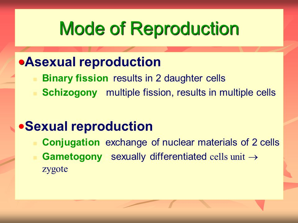 Mode of Reproduction ● ● Asexual reproduction Binary fission: results in 2 daughter cells Schizogony: multiple fission, results in multiple cells ● Se