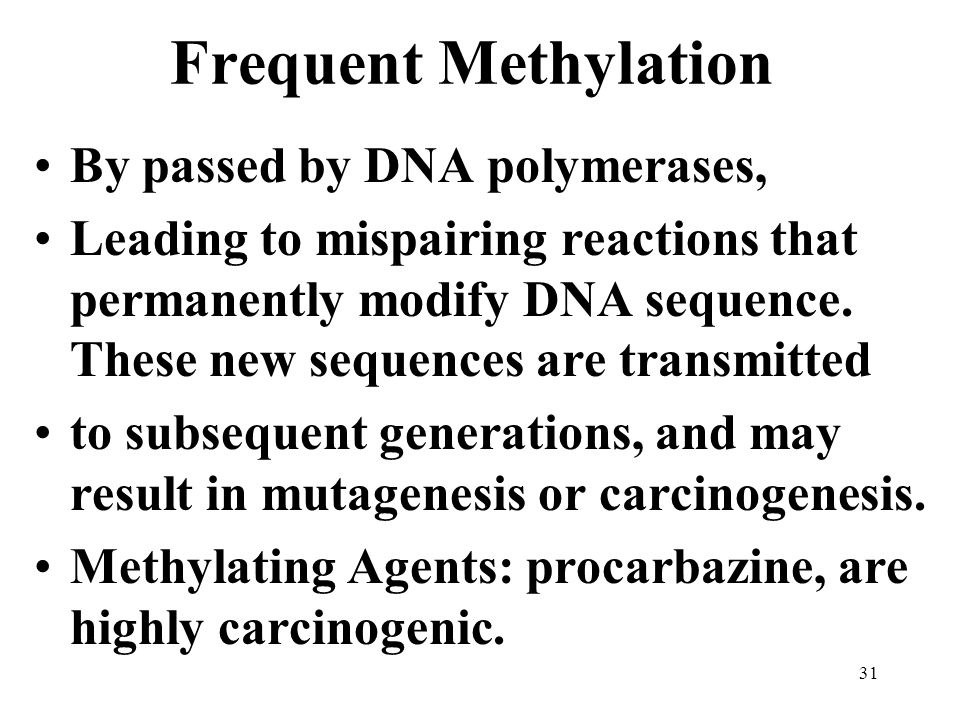 Frequent Methylation By passed by DNA polymerases, Leading to mispairing reactions that permanently modify DNA sequence.