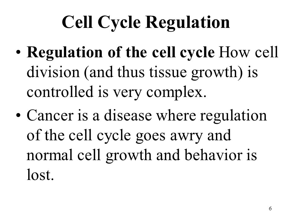 Cell Cycle Regulation Regulation of the cell cycle How cell division (and thus tissue growth) is controlled is very complex.