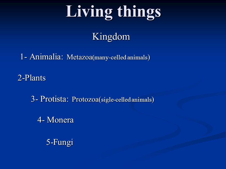 Living things Kingdom 1- Animalia: Metazoa (many-celled animals ) 1- Animalia: Metazoa (many-celled animals ) 2-Plants 3- Protista: Protozoa( sigle-celled animals ) 3- Protista: Protozoa( sigle-celled animals ) 4- Monera 4- Monera 5-Fungi 5-Fungi