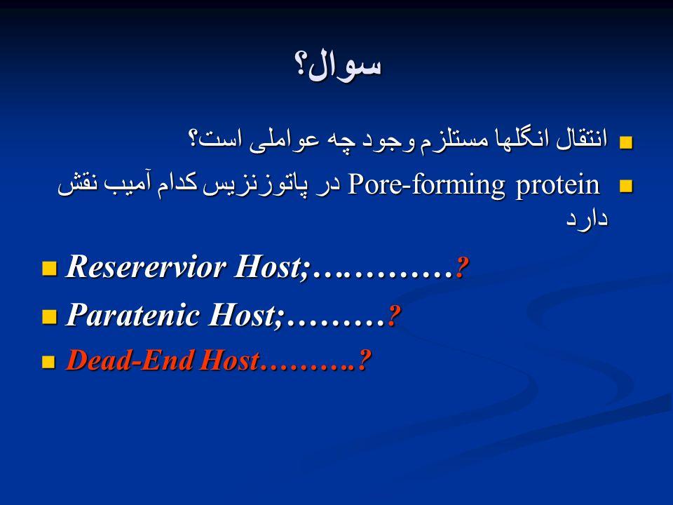 سوال؟ انتقال انگلها مستلزم وجود چه عواملی است؟ انتقال انگلها مستلزم وجود چه عواملی است؟ Pore-forming protein در پاتوزنزیس کدام آمیب نقش دارد Pore-forming protein در پاتوزنزیس کدام آمیب نقش دارد Reserervior Host;….……… .