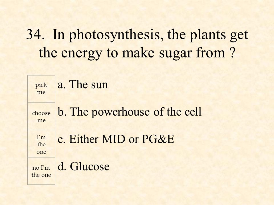 a. The sun b. The powerhouse of the cell c. Either MID or PG&E d.