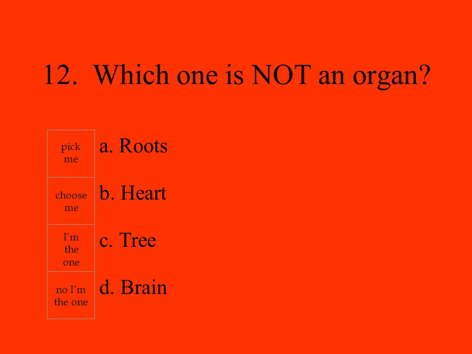 a. Roots b. Heart c. Tree d. Brain pick me choose me I'm the one no I'm the one 12.