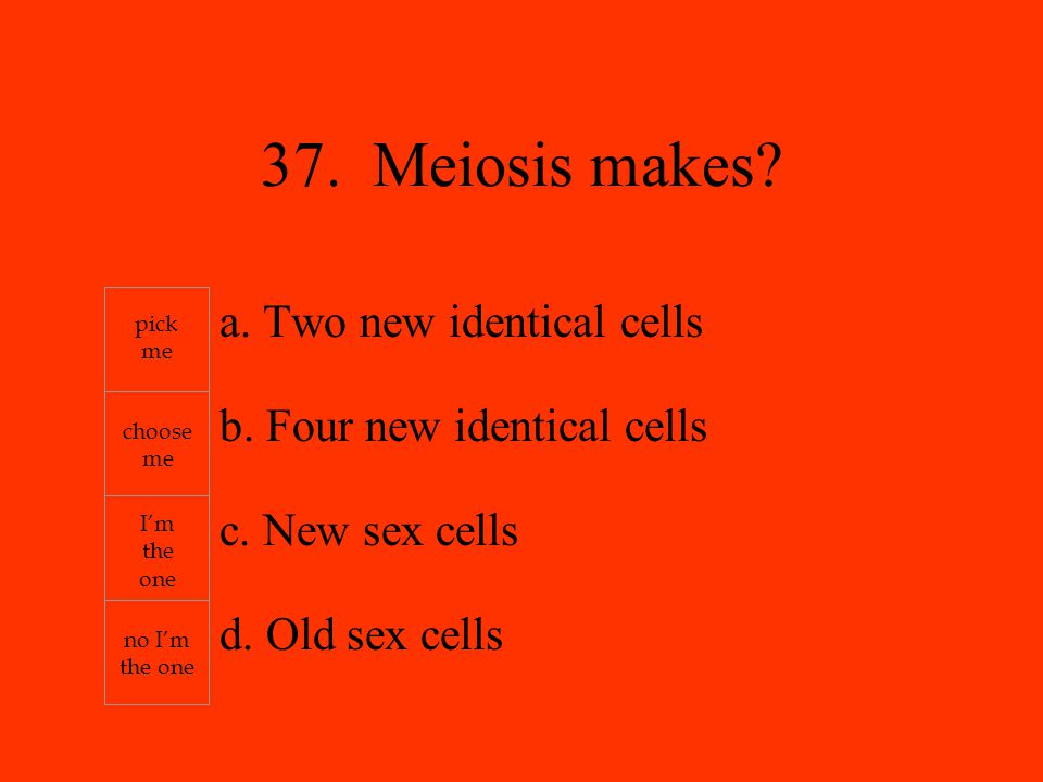 a. Two new identical cells b. Four new identical cells c.