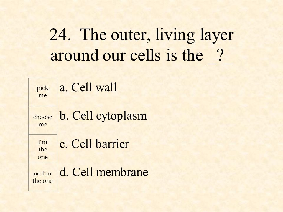 a. Cell wall b. Cell cytoplasm c. Cell barrier d.