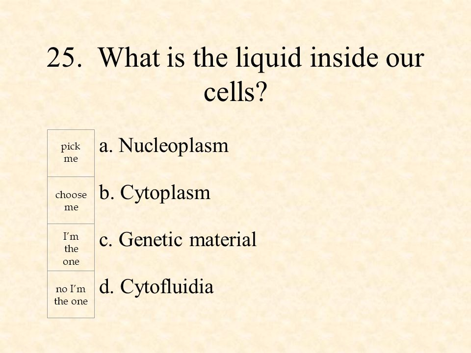 a. Nucleoplasm b. Cytoplasm c. Genetic material d.