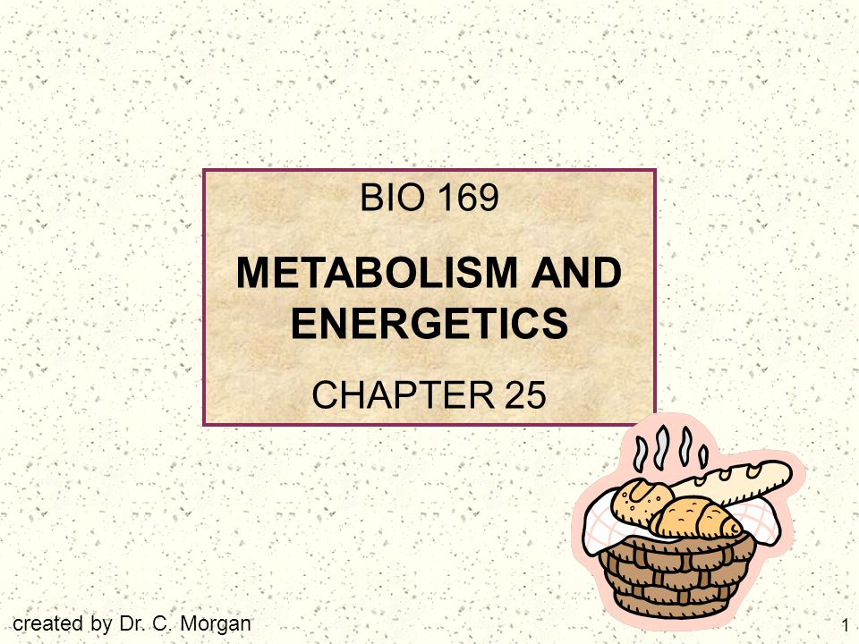 2 TOPICS Introduction and Overview Carbohydrate Metabolism Lipid Metabolism Protein Metabolism Nucleic Acid Metabolism Metabolic Interactions Diet and Nutrition Bioenergetics