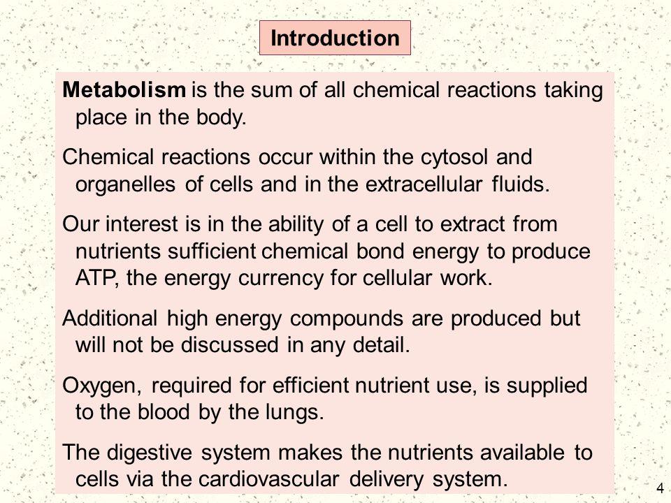 85 Bioenergetics (cont) 85