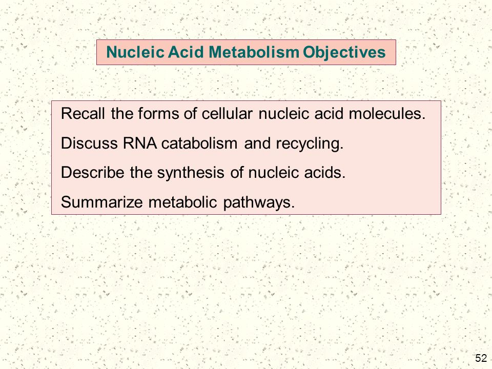 52 Nucleic Acid Metabolism Objectives Recall the forms of cellular nucleic acid molecules. Discuss RNA catabolism and recycling. Describe the synthesi