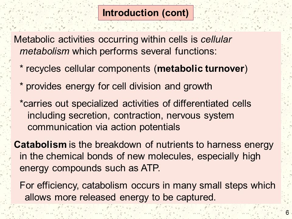 6 Introduction (cont) Metabolic activities occurring within cells is cellular metabolism which performs several functions: * recycles cellular compone