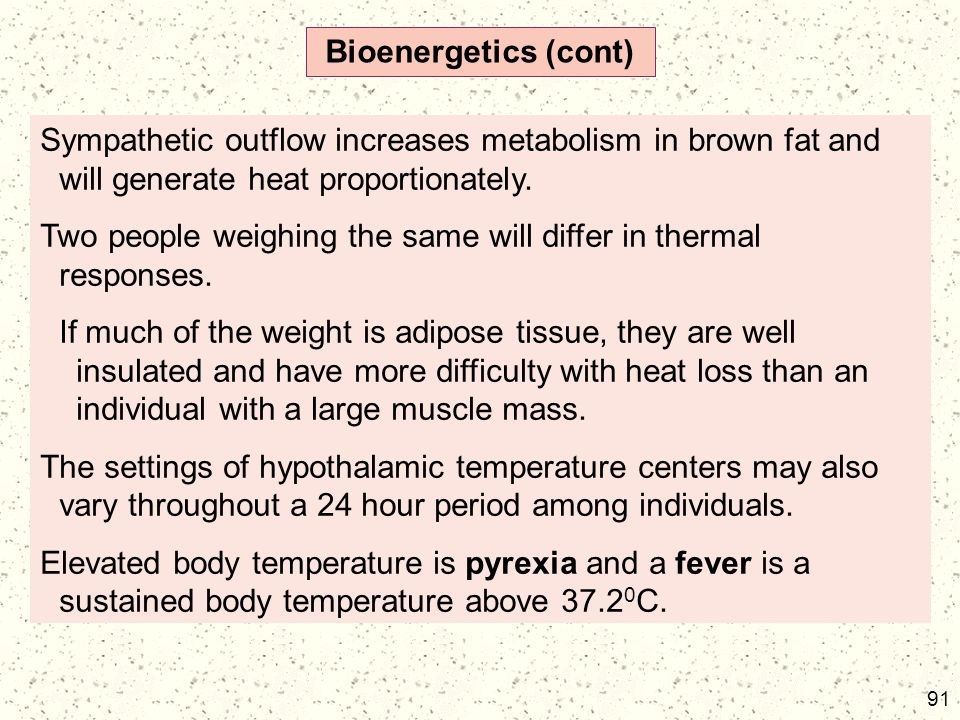 91 Bioenergetics (cont) Sympathetic outflow increases metabolism in brown fat and will generate heat proportionately. Two people weighing the same wil