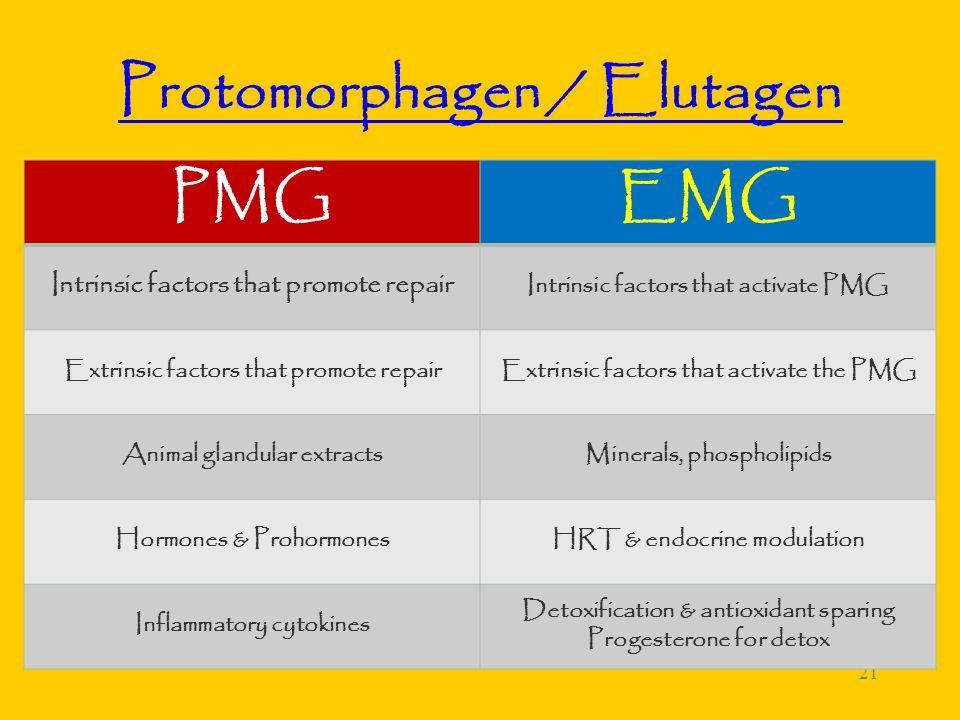 21 Protomorphagen / Elutagen PMGEMG Intrinsic factors that promote repair Intrinsic factors that activate PMG Extrinsic factors that promote repairExtrinsic factors that activate the PMG Animal glandular extractsMinerals, phospholipids Hormones & ProhormonesHRT & endocrine modulation Inflammatory cytokines Detoxification & antioxidant sparing Progesterone for detox