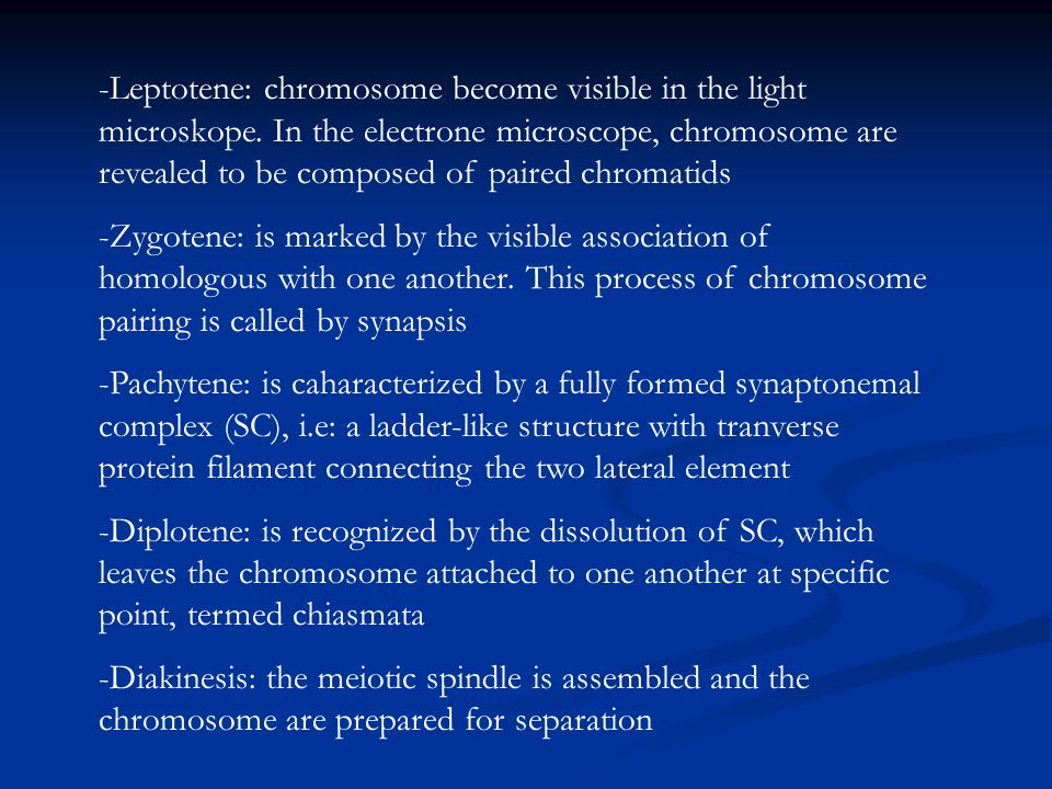 -Leptotene: chromosome become visible in the light microskope. In the electrone microscope, chromosome are revealed to be composed of paired chromatid
