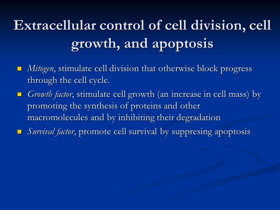Extracellular control of cell division, cell growth, and apoptosis Mitogen, stimulate cell division that otherwise block progress through the cell cyc