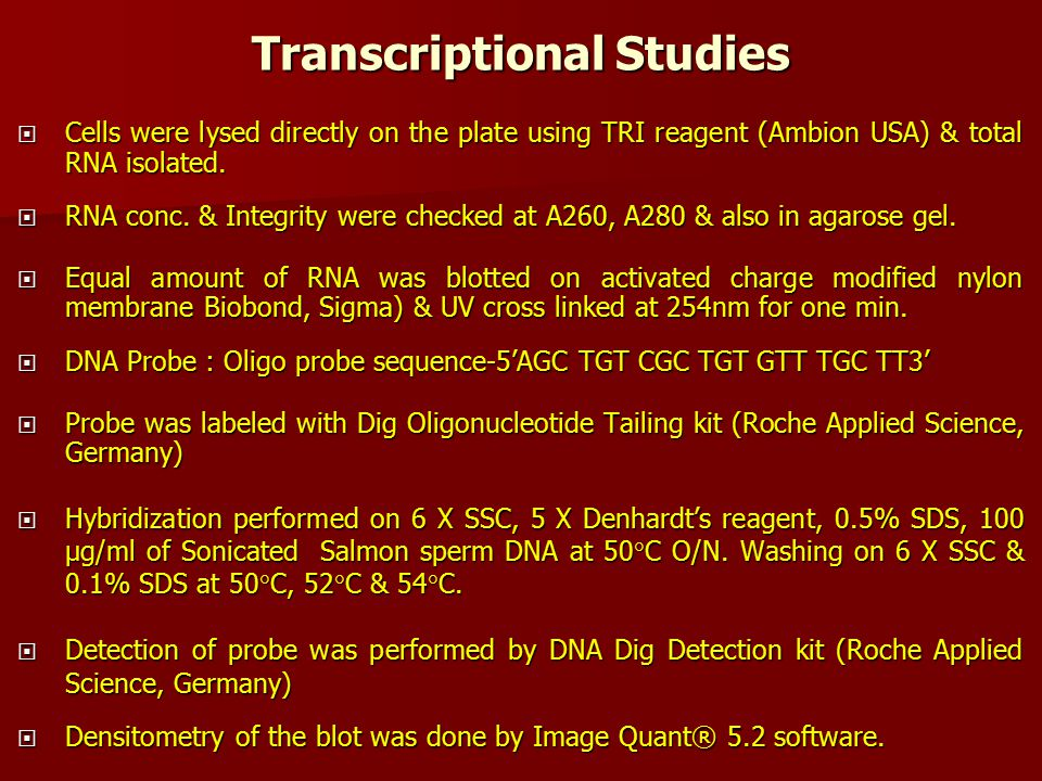 Transcriptional Studies  Cells were lysed directly on the plate using TRI reagent (Ambion USA) & total RNA isolated.