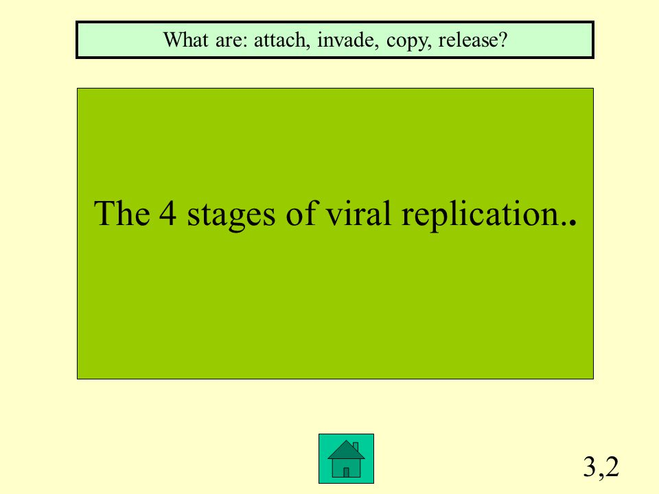 3,2 The 4 stages of viral replication.. What are: attach, invade, copy, release?