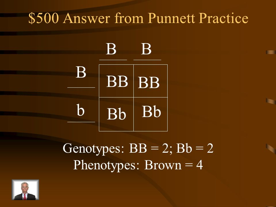 $500 Question from Punnett Practice First to correctly write: Completed Punnett square List the genotypes of the offspring List the phenotypes of the offspring A homozygous dominant brown mouse is crossed with a heterozygous brown mouse (Use B and b)