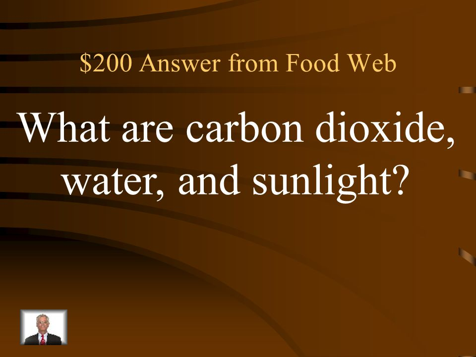$200 Question from Food Web Three ingredients that must be present for plants to make glucose through photosynthesis.