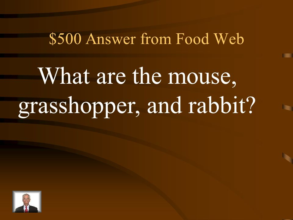 $500 Question from Food Web Three primary consumers in the food web