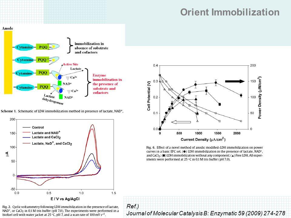 Orient Immobilization Ref.) Journal of Molecular Catalysis B: Enzymatic 59 (2009) 274-278
