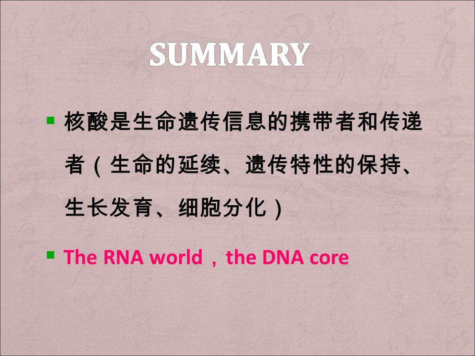  核酸是生命遗传信息的携带者和传递 者(生命的延续、遗传特性的保持、 生长发育、细胞分化)  The RNA world , the DNA core