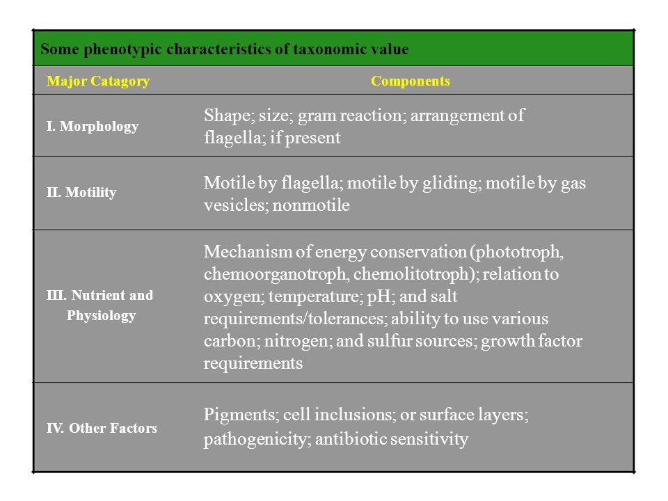 Some phenotypic characteristics of taxonomic value Major Catagory I. Morphology II. Motility III. Nutrient and Physiology IV. Other Factors Components