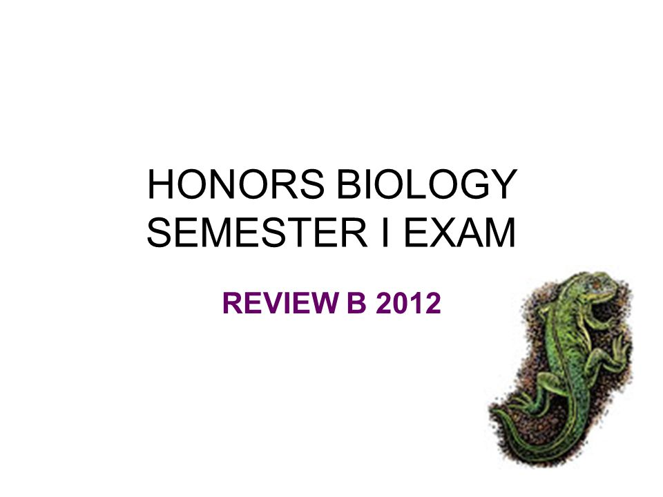 HONORS BIOLOGY SEMESTER I EXAM REVIEW B 2012