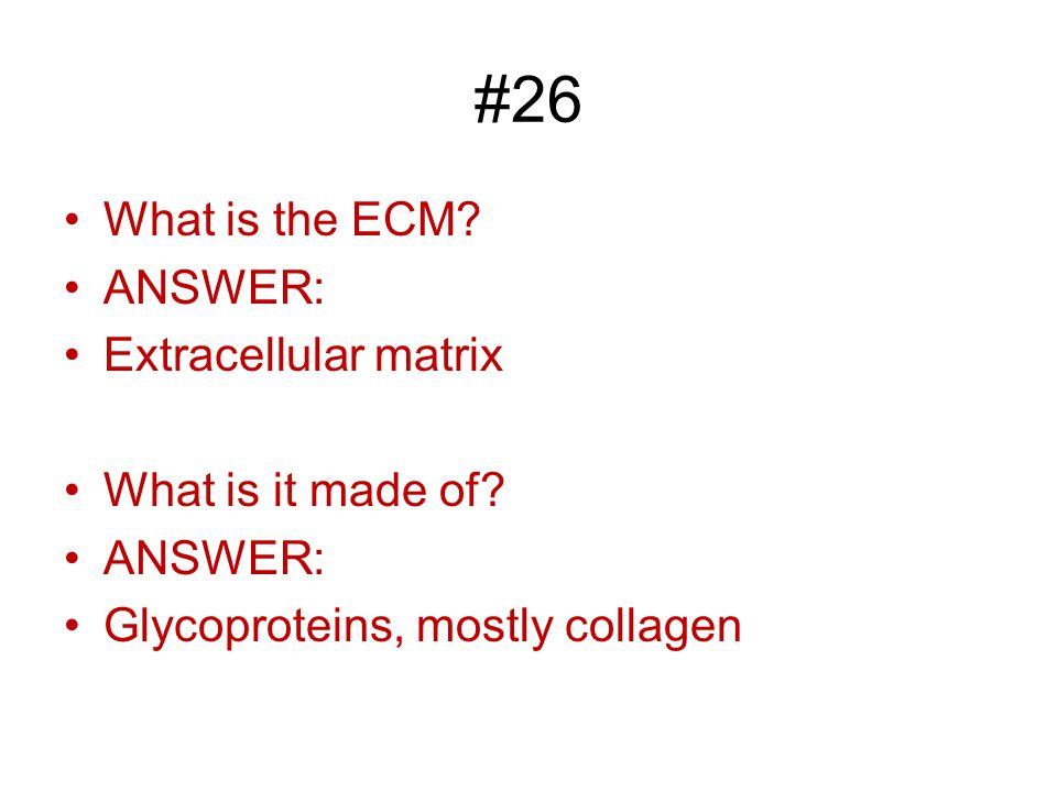 #26 What is the ECM. ANSWER: Extracellular matrix What is it made of.