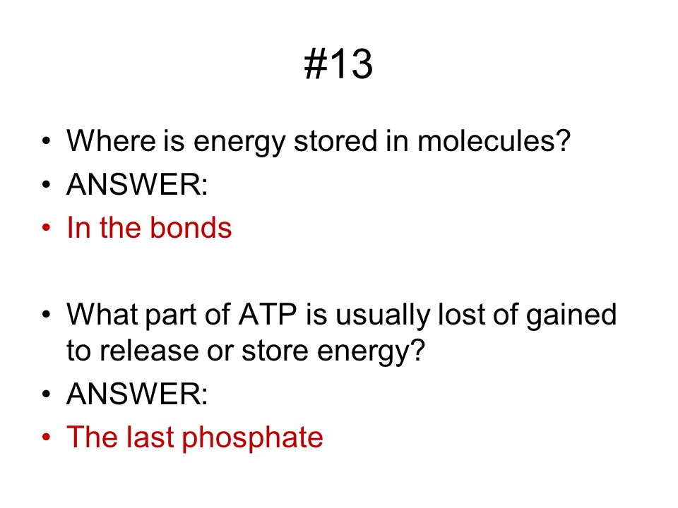 #13 Where is energy stored in molecules.