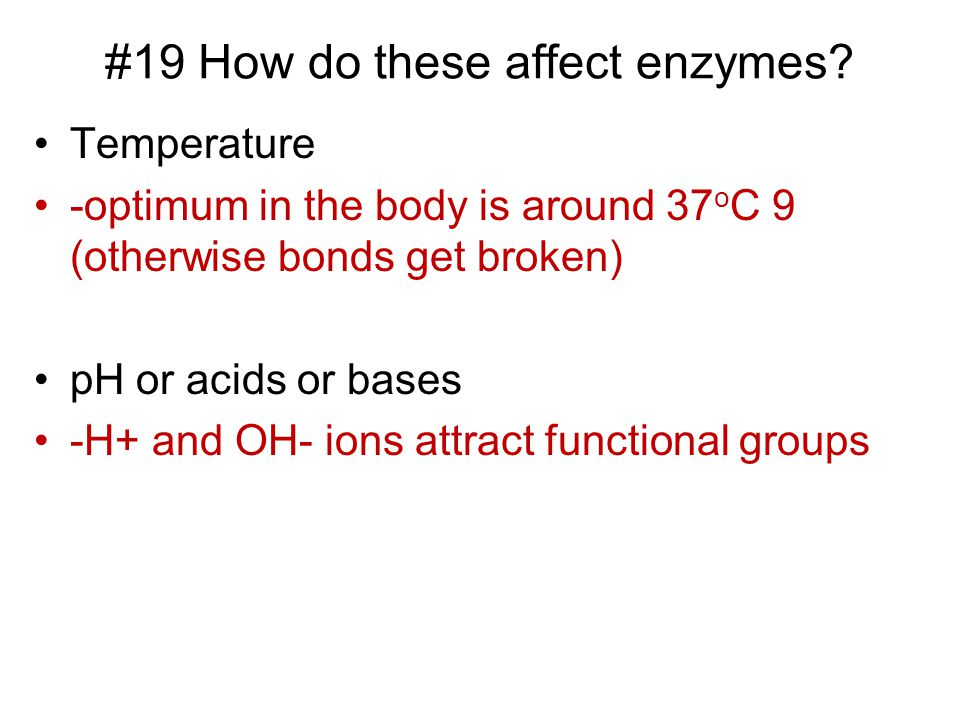 #19 How do these affect enzymes.
