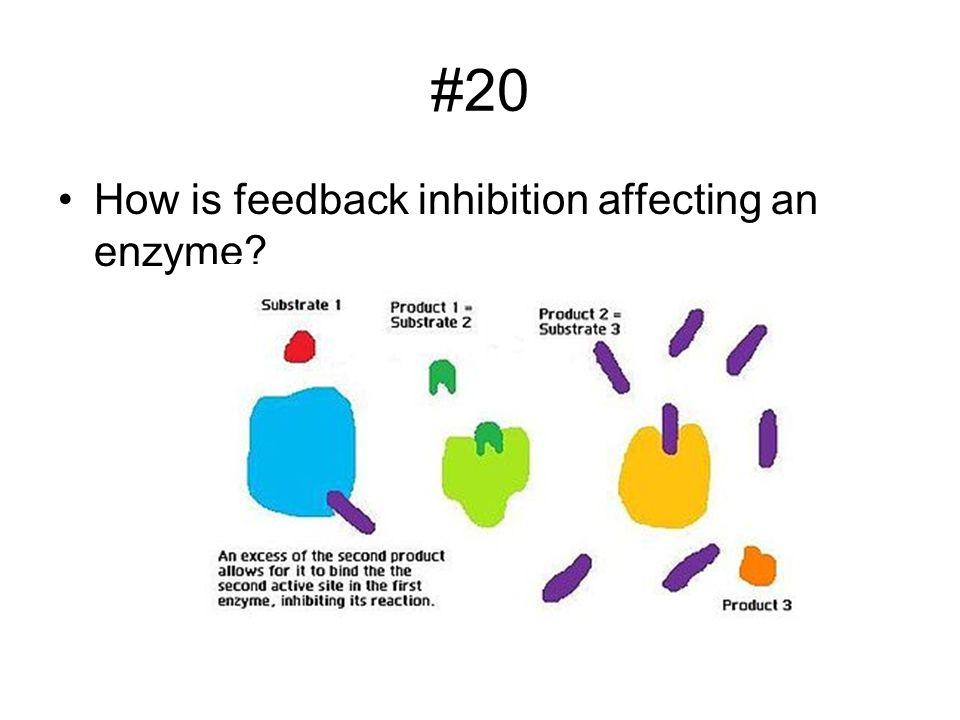 #20 How is feedback inhibition affecting an enzyme