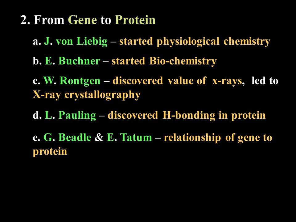 a. J. von Liebig – started physiological chemistry b.