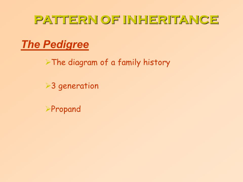 The Pedigree  The diagram of a family history  3 generation  Propand PATTERN OF INHERITANCE