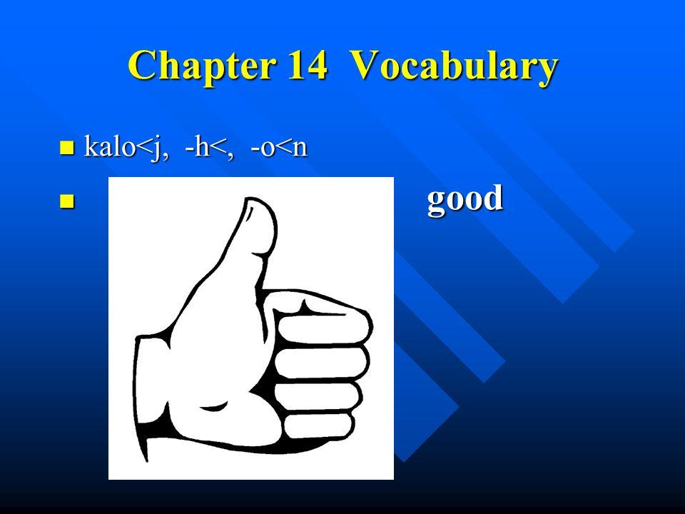 Chapter 14 Vocabulary kalo<j, -h<, -o<n kalo<j, -h<, -o<n good good