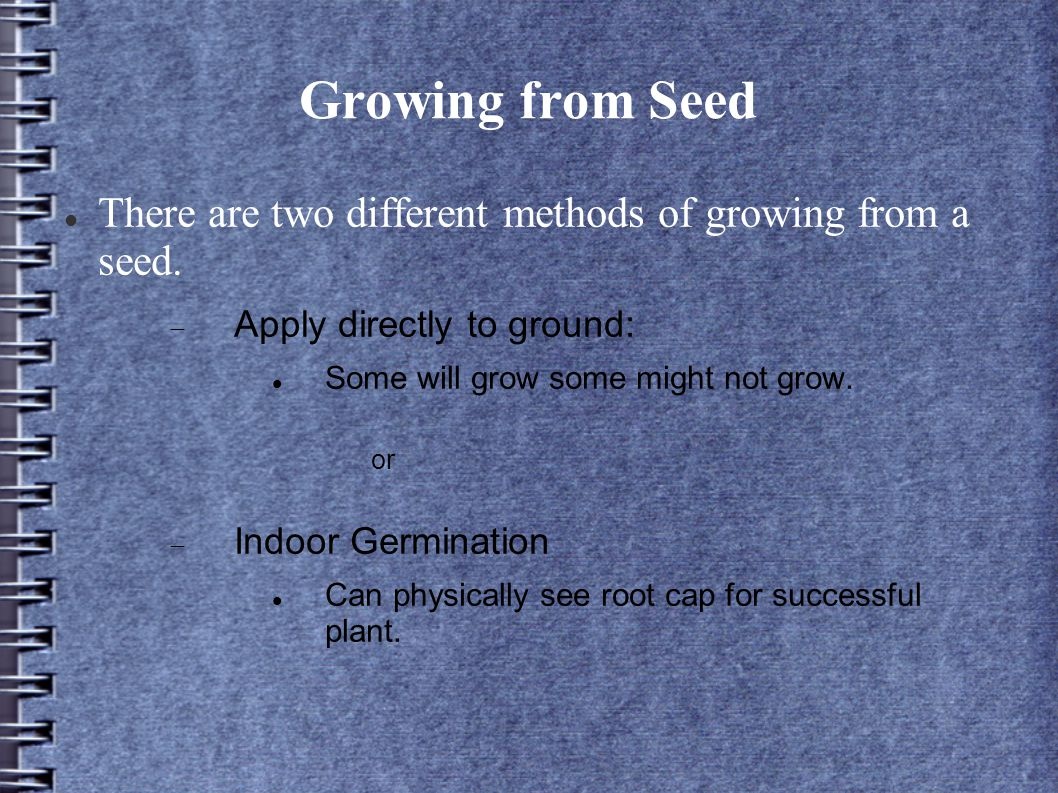 Growing from Seed There are two different methods of growing from a seed.  Apply directly to ground: Some will grow some might not grow. or  Indoor