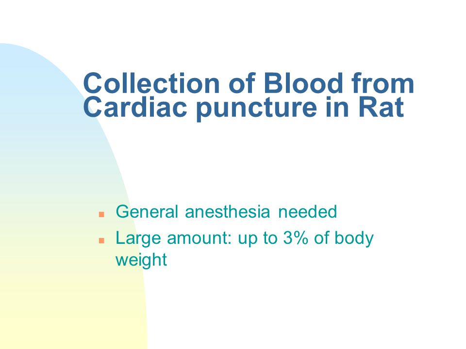 Collection of Blood from Cardiac puncture in Rat n General anesthesia needed n Large amount: up to 3% of body weight