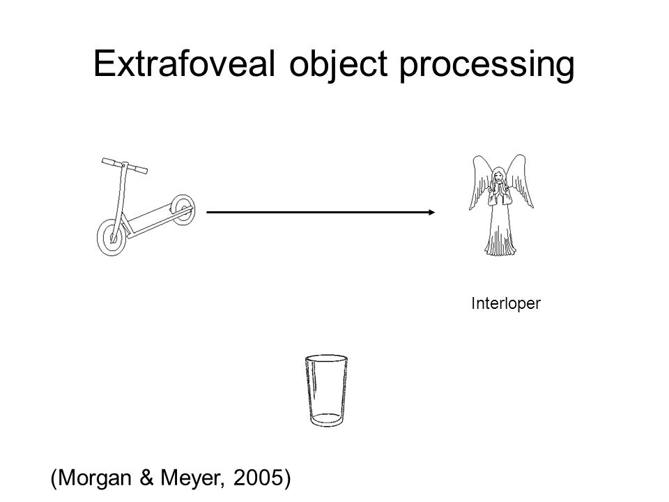 Extrafoveal object processing Interloper (Morgan & Meyer, 2005)