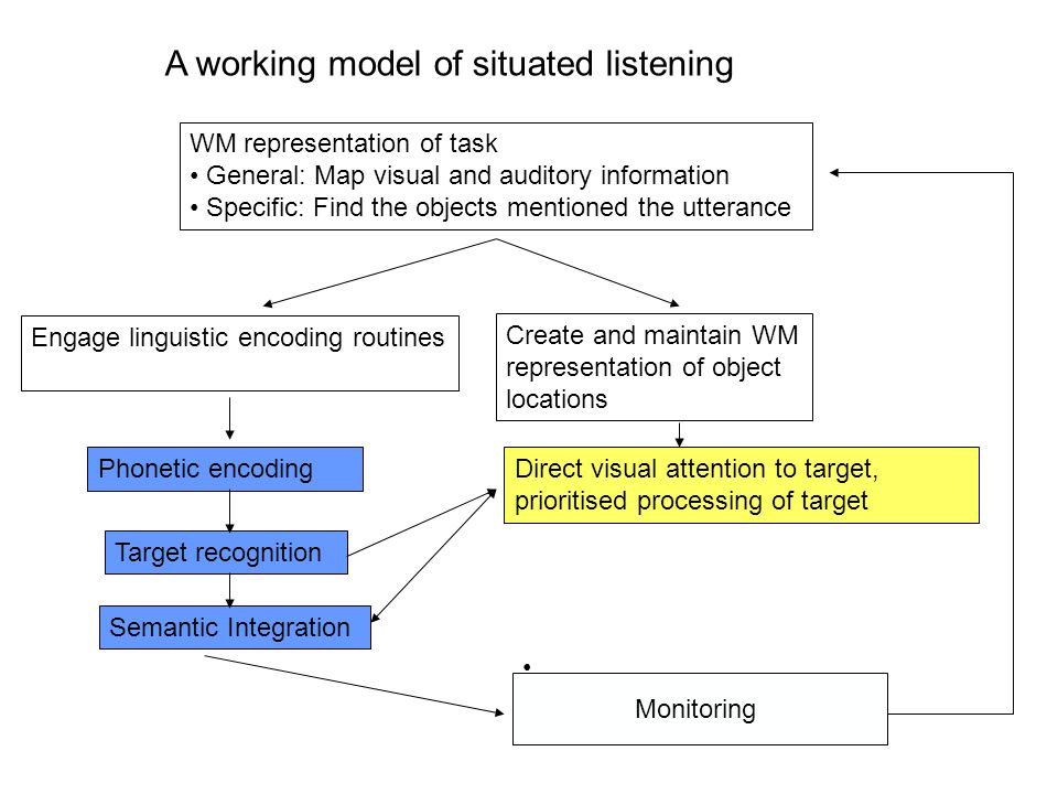 Direct visual attention to target, prioritised processing of target Phonetic encoding Target recognition Semantic Integration Create and maintain WM representation of object locations WM representation of task General: Map visual and auditory information Specific: Find the objects mentioned the utterance Engage linguistic encoding routines A working model of situated listening Monitoring